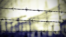 """Постер, картина, фотообои """"lines of barbed wire to demarcate the border during the war"""""""