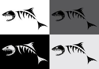 predatory fish skeleton