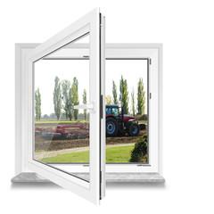 Fenster 19