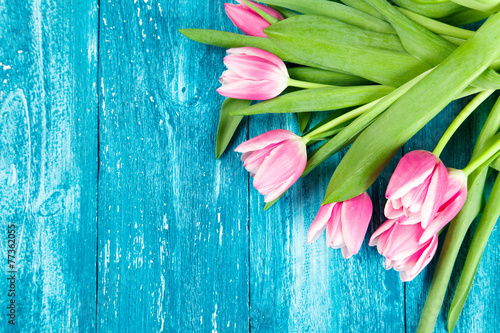 Foto op Canvas Tulp Beautiful pink tulips on blue wood background