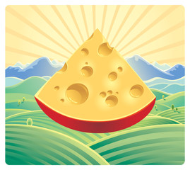 Cheese on the field background.