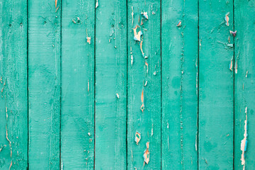 Old wood painted with green paint background