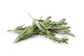Fresh rosemary herbs isolated on white background