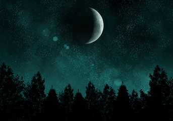 Starry night with forest and moon