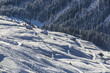 alpine slope I