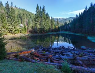 Carpathian mountain autumn landscape with lake.