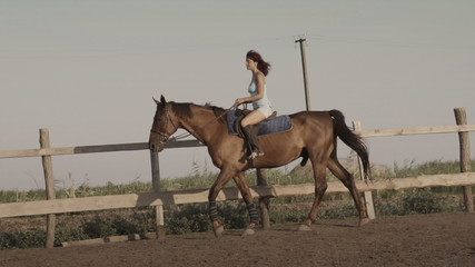 Young woman riding a horse on a lunging rein