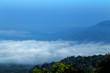 Mountain with mist landscape