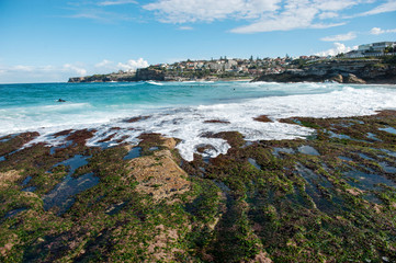 Australia, New South Wales, Sydney, Tamarama beach