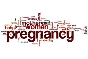 Pregnancy word cloud