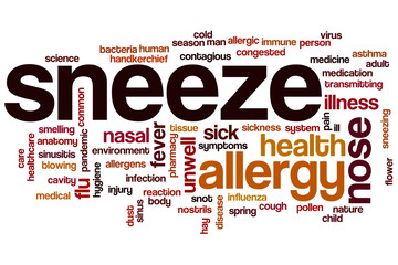Sneeze word cloud
