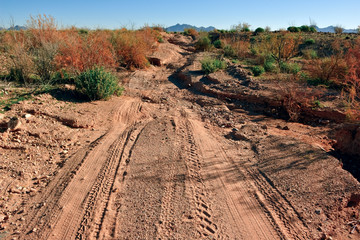 USA, Arizona, Maricopa County, Gila Bend, Washed Out Road in Old Citrus Valley