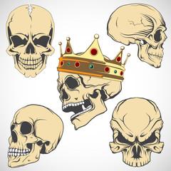 Set of vector skulls.