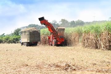 sugarcane harvester, four-wheel tractor