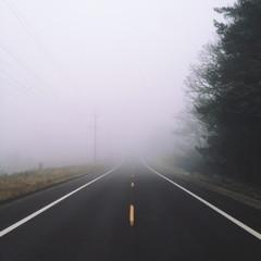 Fog down road