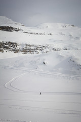Cross-country skier in the austrian Alps