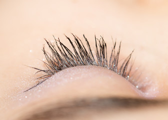 eyelash. close-up