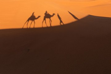 Morocco, Sahara Desert, Shadows of people and camels on sand