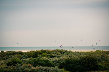 Netherlands, Flying Kites On A Windy Beach In Holland