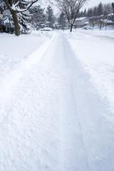 Snow Fall in a Suburban Neighborhood