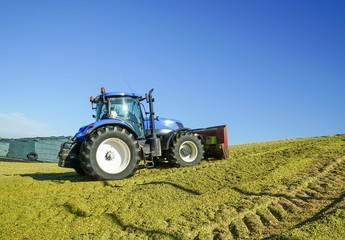 Silomaisernte,  Traktor mit Planierschild verteilt Maissilage