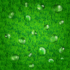 Background with grass and water drops