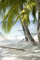Maldives, Hammocks on white sandy beach