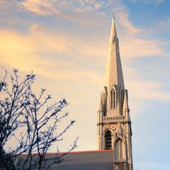 United Kingdom, England, London, St Matthew's Church, Spire against moody sky with frosted tree branches in foreground