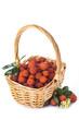 Cesta con frutas de madroño aislada sobre fondo blanco