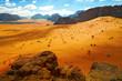 Wadi Rum desert, Jordan - 77410824