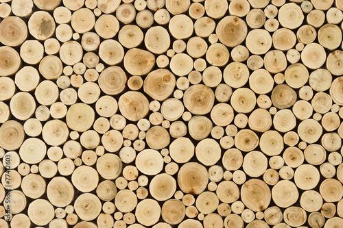 fototapeta na ścianę kikut tle drewna
