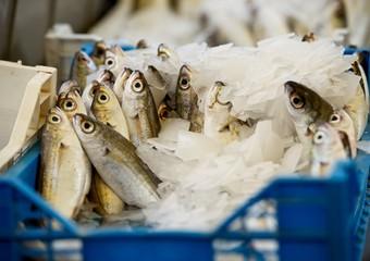 Malta, Fresh fish in street market