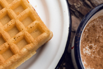 Waffles and milk with cinnamon