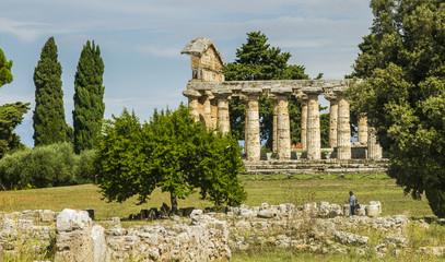 Temple of Paestum - Italy