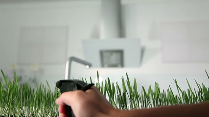 Close up of spraying blades of grass with water