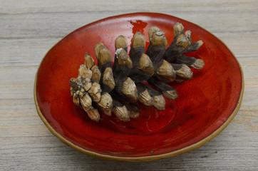 pine cones on a red ceramic bowl