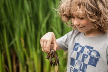 Portrait of boy (4-5) holding a crab