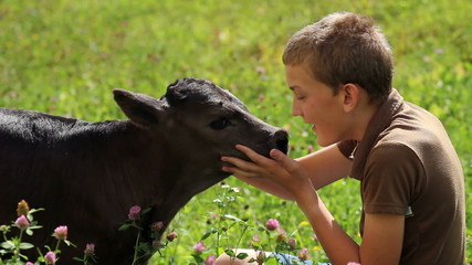 A young boy petting a small calf on a meadow