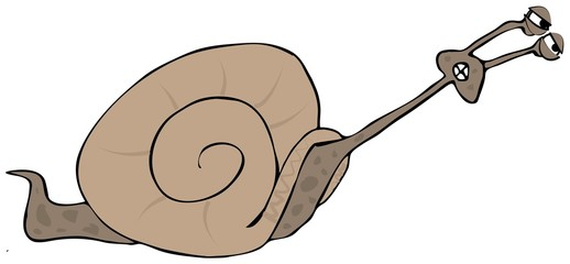 Snail straining to go faster