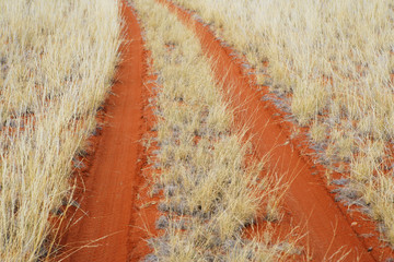 Tire tracks in desert