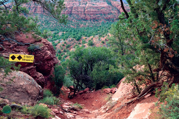 USA, Arizona, Sedona, View of trail and bushes along