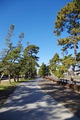 草加市の松原