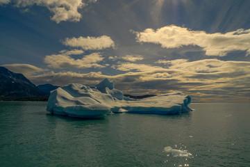 Argentina, Calafate, Seascape with floating iceberg