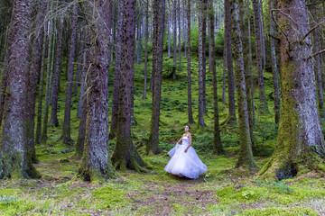 UK, Scotland, Women in wedding dress in forest