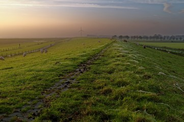 Germany, Ostfriesland, Embden, Petkum, View along dike of river Ems with grazing sheep and gossamer on sides