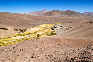 Chile, Atacama Desert, River