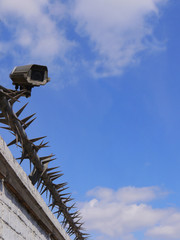 Security Camera And Rota Spike Security Fencing