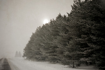 USA, Michigan, Snowstorm