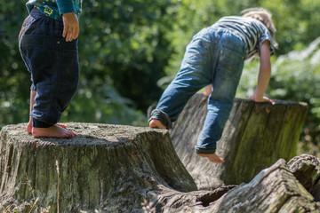 Boys (2-3, 4-5) climbing tree stamps