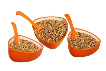 Natural golden color coriander seeds in orange cup with spoon